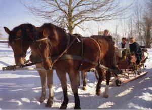 Fahrt mit dem Pferdeschlitten
